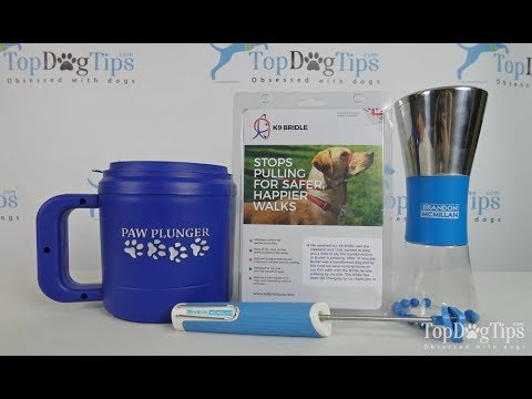 FREE Dog Training Supplies Giveaway - 동영상