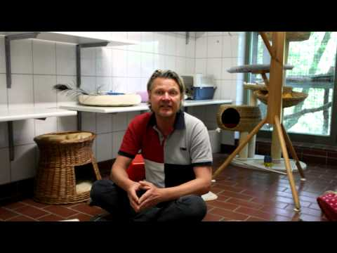 Tierhalter-Tipps von Frank Weber: Registrierung per Mikrochip