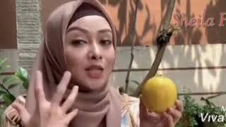 Sari Jus Lemon Murni  Sheila Fresh 500ml Laris