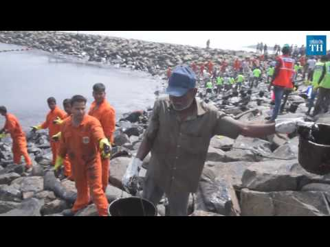 Massive clean-up operation to clear oil slick across Chennai beaches