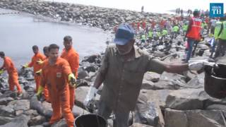 Massive clean-up operation to clear oil slick...