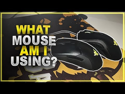 What Mouse Am I Using For CS:GO? (Comfort Vs Control)