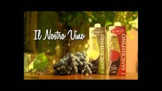 Repeat youtube video Parodia pubblicità San Crispino By Califfo John