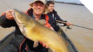 Big Channel Catfish using Circle Hooks