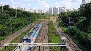 [코레일 8500호대] (2대) 시멘트 화물열차 + 컨…
