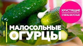 Малосольные огурцы / рецепт быстрых, хрустящих, очень вкусных малосольных огурцов [Patee. Рецепты]