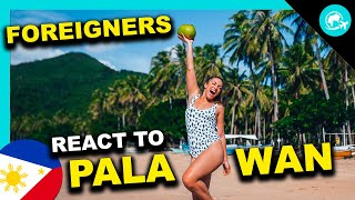 FOREIGNERS react to PALAWAN - Philippines Paradise Island