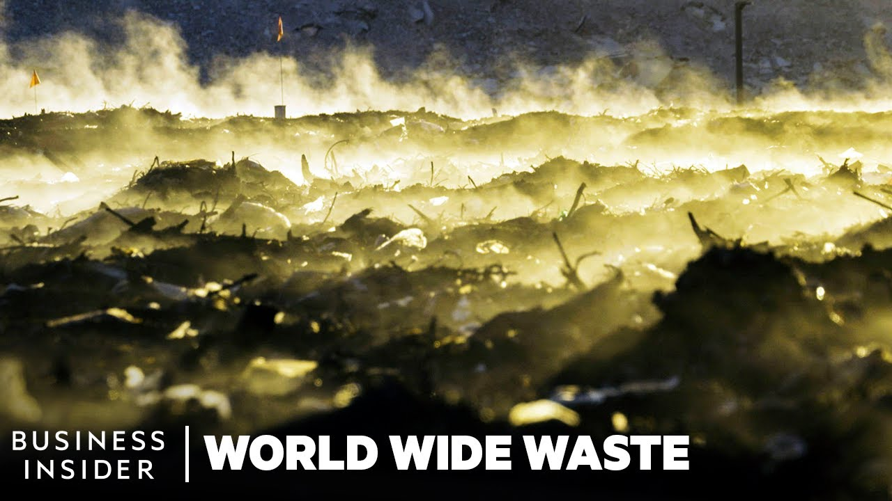 Download What Happens To The Trash In Your Compost Bin | World Wide Waste