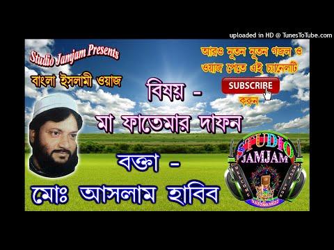 Ma Fatemar Dafan 2 ।। Waj Bangla New ।। Aslam Habib Saheb