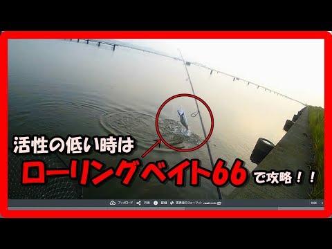 シーバス ルアー ローリングベイト66を使えば活性が低くてもシーバスが釣れる 実釣動画 シーバス釣り 河川編 2018