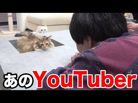 YouTuberがちゃちゃとマロンに会いにきた!!
