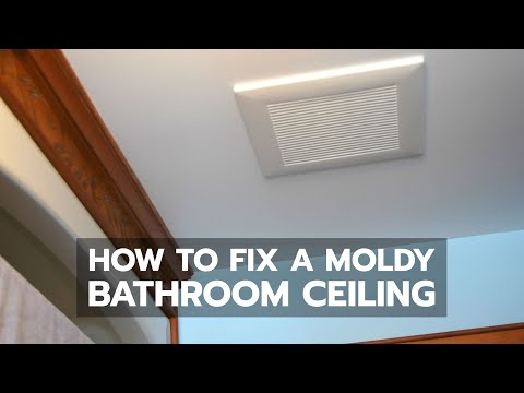 Surface Mold In Bathroom mold bathroom ceiling remove black mold on bathroom ceiling