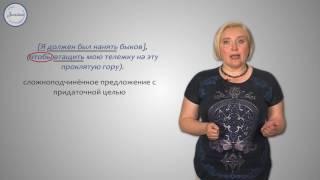Русский 9 Сложные союзные предложения