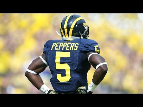 "Jabrill Peppers Highlights || ""Freshman of the Year"" 
