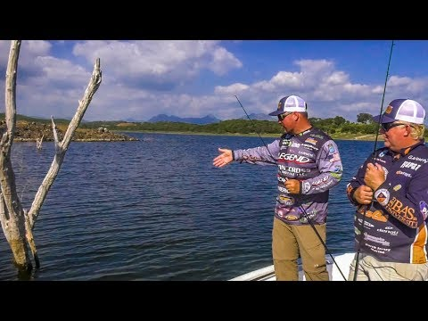 HERE Is Where The BASS Are! Shallow Water Fishing SECRETS