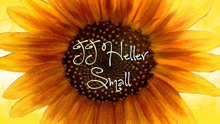 Watch Jj Heller Small video