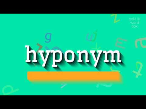 "How to say ""hyponym""! (High Quality Voices)"