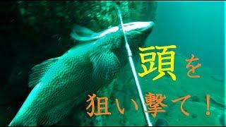 【ブログ】http://ameblo.jp/daitube/entry-12288695783.html 【Twitter...