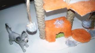 Аксессуары для кошки!!!