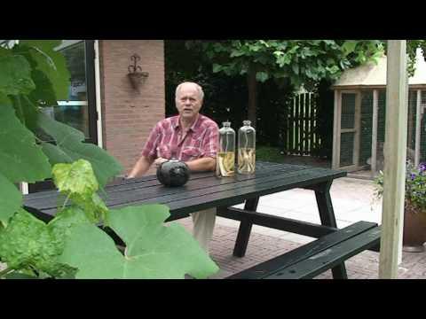 Peter Bresil - Het heeft geen zin.