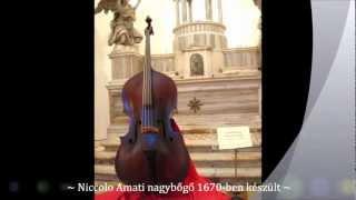 ~ Gasparo de Saló ~ Giovanni Paolo Maggini ~ Andrea Amati ~ Stradivari ~ Guarneri ~ Jacob Stainer ~