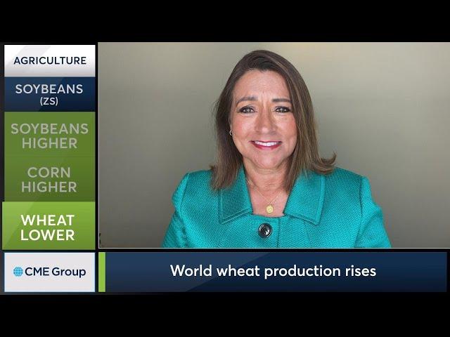August 12 Grains Commentary: Virginia McGathey