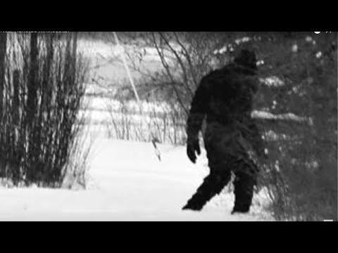 bigfoot living in my County in Minnesota????