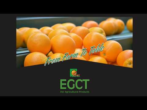 Egct for Agricultural Products-Fresh fruits & Vegetables Exporters - Egypt