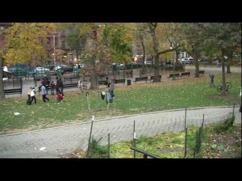 Harlem's Marcus Garvey Park Not Making The Grade