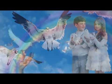 Птицы мои, птицы  Алеся  Видео Алена Премудрая