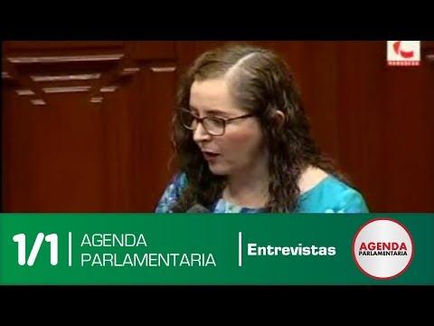Entrevista: Presidenta de la Comisión Lava Jato, Rosa Bartra (18/04/18)