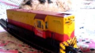 Ferrocarriles Argentinos locomotora 6555 escala HO