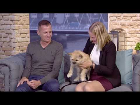 Dion and Lucja Leonard with Gobi the Dog on STV 'Live at Five'