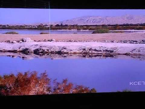 Salton Sea - Potential Massive Source of Renewable Energy