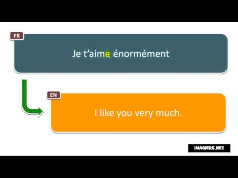 Say It In French = I Like You Very Much