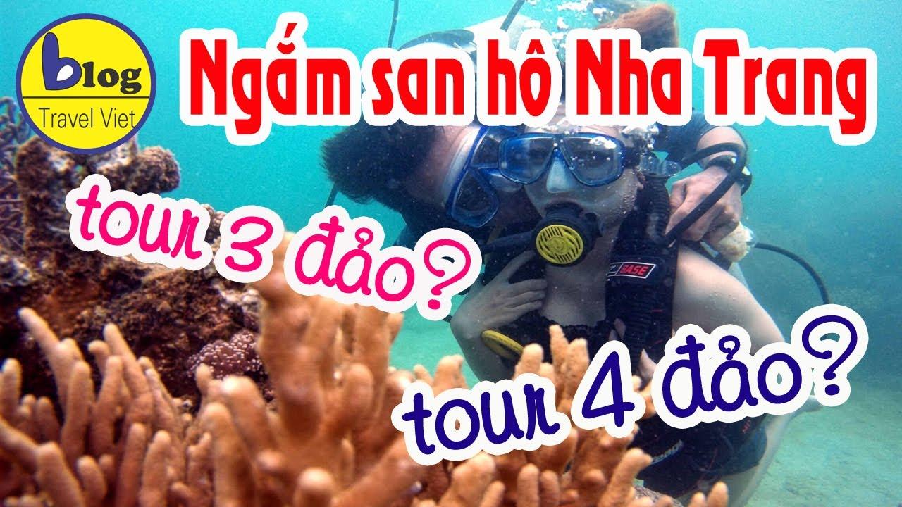 Lặn ngắm san hô Nha Trang nên chọn tour 3 đảo hay tour 4 đảo?