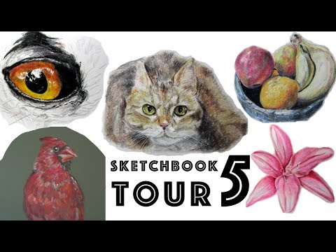 Colored Pencil Sketchbook Tour: Realistic Animals, Flowers, Food 🎨  ASMR