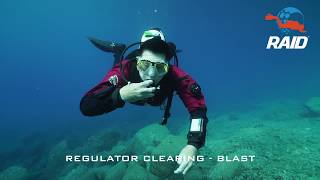 REGULATOR CLEARING - BLAST METHOD