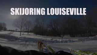 Skijoring Louiseville