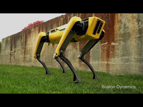 Download Youtube: This New Robot Dog Has a Playful Spirit