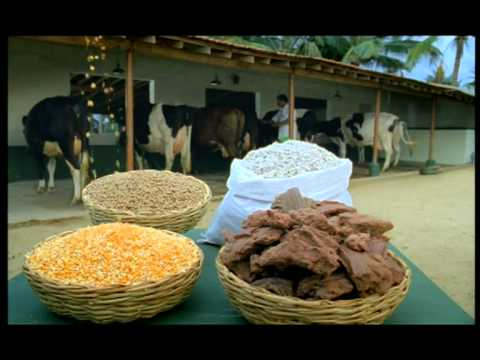 Arokya milk cattle feed 40 sec
