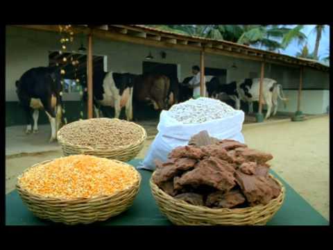 Arokya milk cattle feed 40 sec