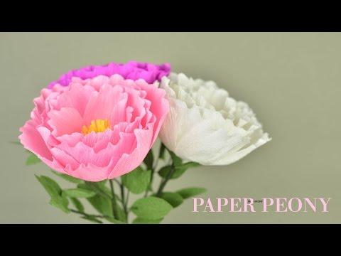 Crepe Paper Peony Flower - Hoa mẫu đơn   Khéo tay