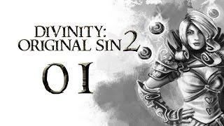 Divinity: Original Sin 2 - Part 1 (ALPHA - Let