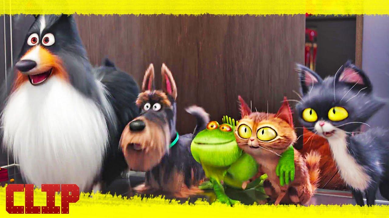 la vida secreta de tus mascotas tv spot 2016 espa ol