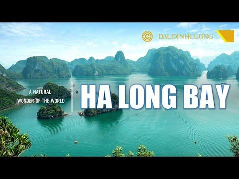 DU LỊCH HA LONG BAY GIỚI THIỆU TIẾNG ANH - halong bay ha long bay luxury cruise ha long bay vietnam