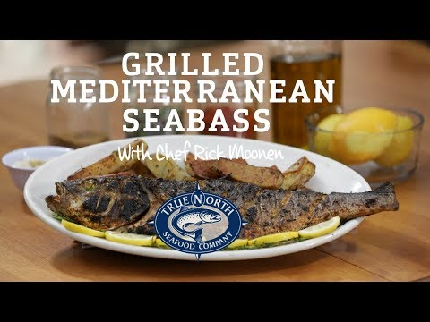 Mediterranean Sea Bass With Charmoul With Chef Rick Moonen