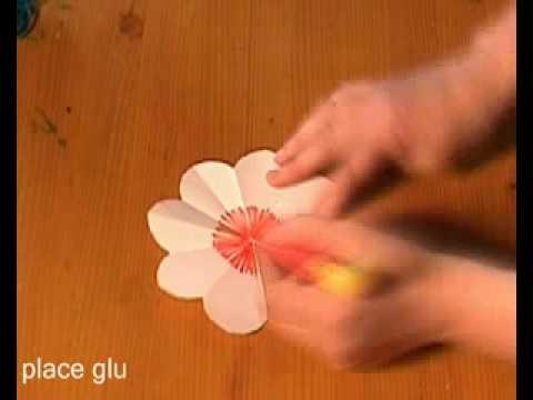 Laurka Z Kwiatów Youtube