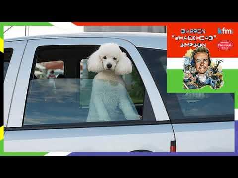 Whackhead Simpson - Car-Pet Call