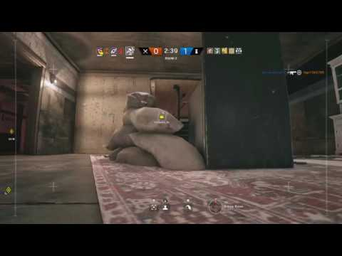 Another sledge Ace